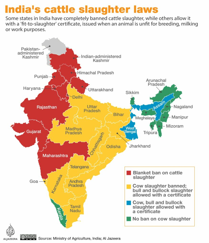 Image of India broken down by the states which ban beef, and those that do not